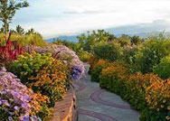 Red-Butte-Gardens